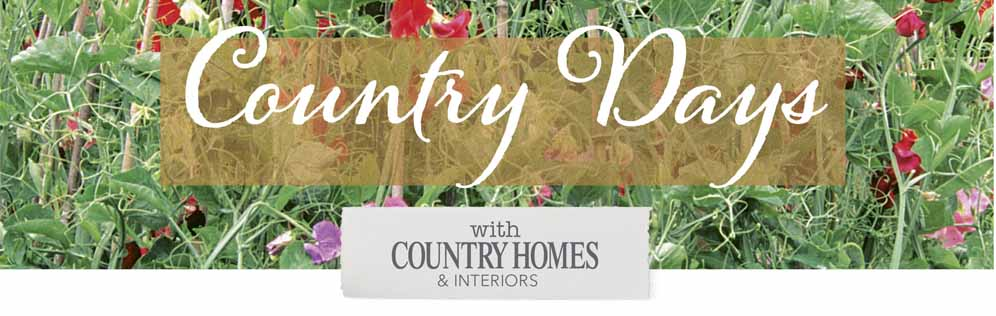 Comnuntry Homes and Interiors Header