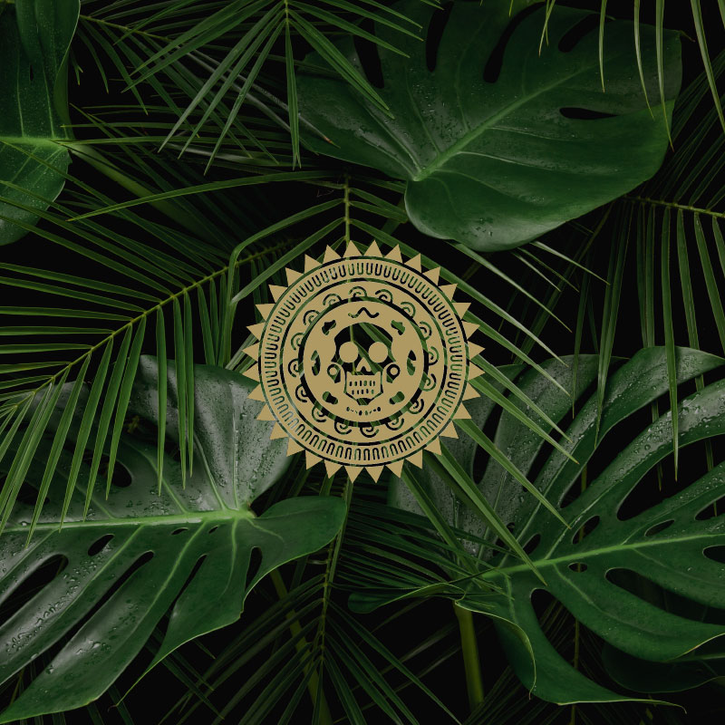 branding agency worcestershire - Aztec Rum