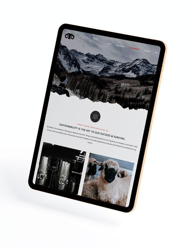 Blog Copy - Digital Marketing Experts